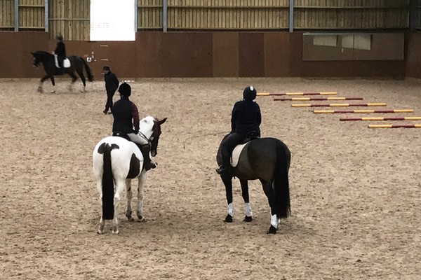 horses and riders training at our equestrian centre