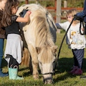 image of children petting a horse